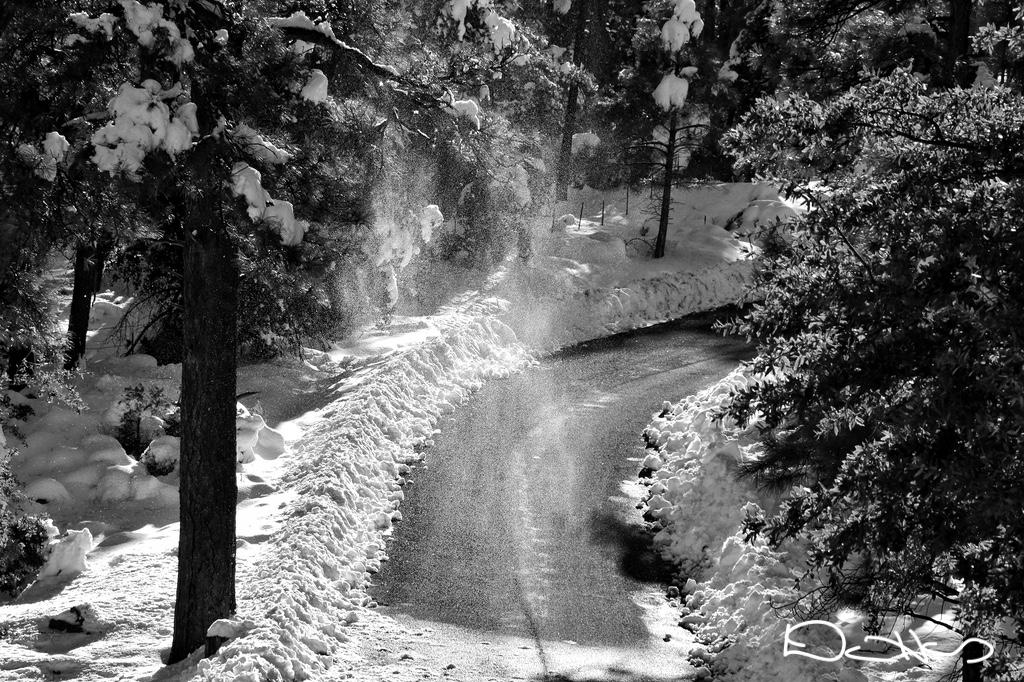 Cottonwood Verde Valley Arizona AZ RVing fulltiming boondock camping eLearning communication mLearning community digital photography nikon Chris Dana Haines journey adventure travel