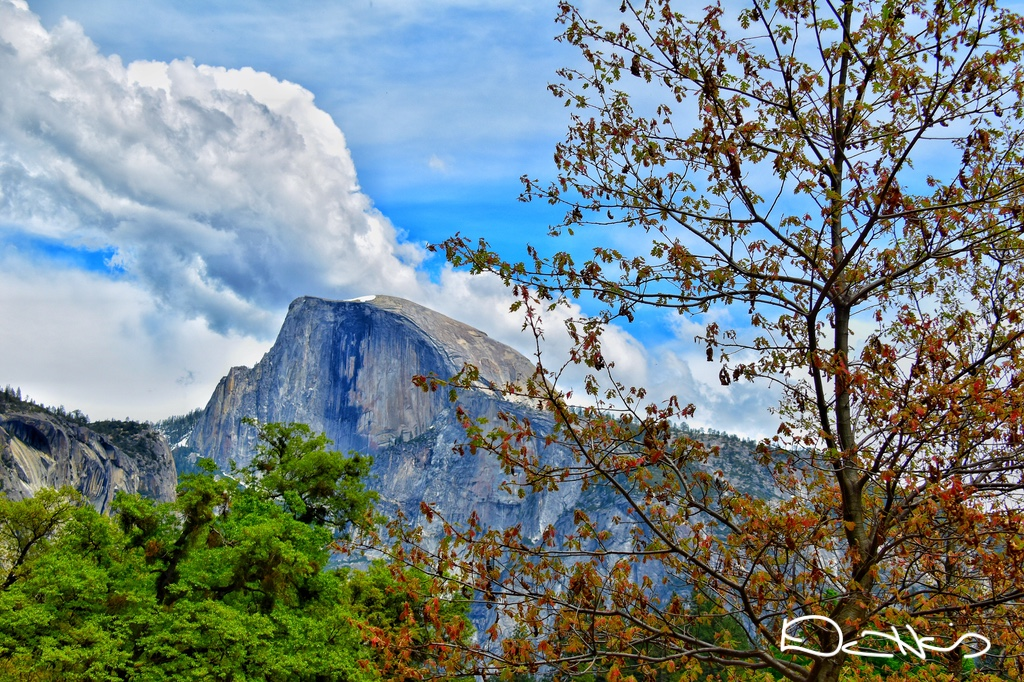 Yosemite California CA Boondocked Media Travel Photography